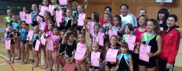 Der 7. Girls Gym Summer Cup wurde dieses Jahr in...