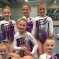 Gym Turnerinnen erfolgreich bei den Bayerischen Meisterschaften Bei den diesjährigen […]