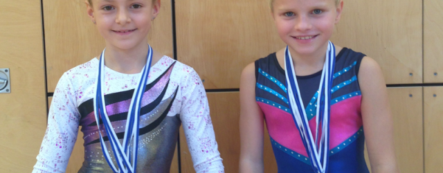 Bei den bayerischen Meisterschaften in Veitshöchheim konnten die TuS Turnerinnen […]